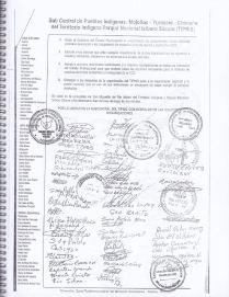 RESOLUCION 2010 DEFENSA DE LA INTEGRIDAD TERRITORIAL DEL TIPNIS 2